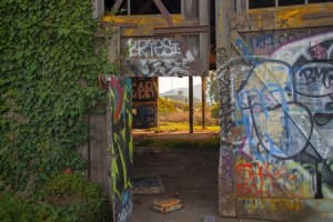 Graffiti Suits